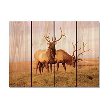 gizaun Art Bull Elk Innen/Außen Wand Kunst, Full Color auf Zeder .