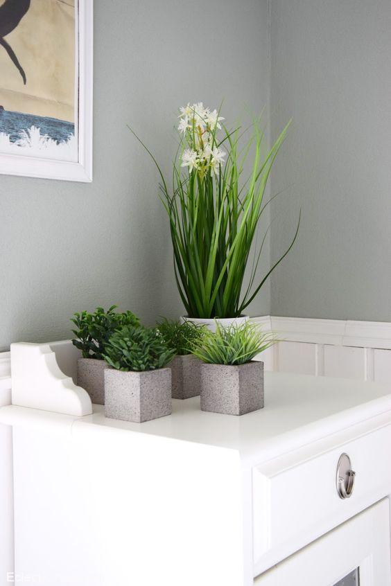 Pflanzen für mein Badezimmer und Einblicke (... endlich mal wieder .