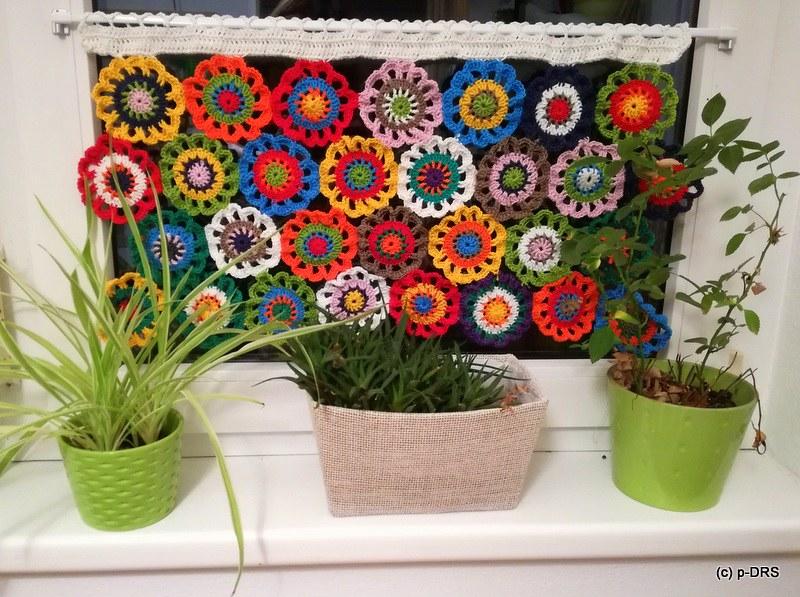 Blumenvorhang | Blumenvorhang | joeyofchampsrunners | Flic