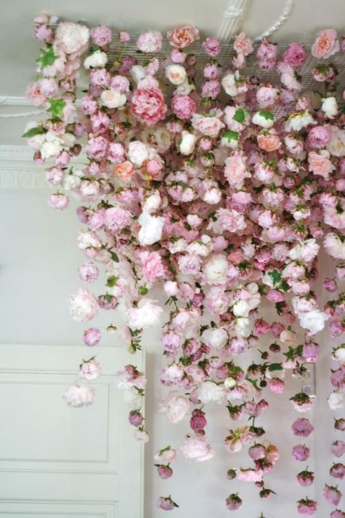 Blumen Vorhang | Blumenvorhang, Hochzeitsblumen, Blum