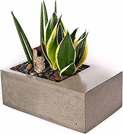 Moderne Betonpflanzgefäße von Kevin Wood in der Kategorie .