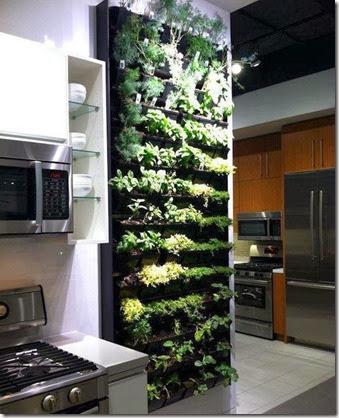 Top 10: Indoor Herb Garden Ide