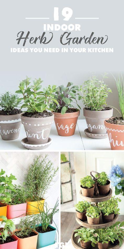 Indoor Kräutergarten DIY | Pflanzen Drinnen | Garten ideen, Diy .
