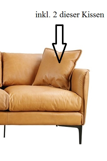 Modernes Ledersofa Loungesofa 2-Sitzer camel Büffelled
