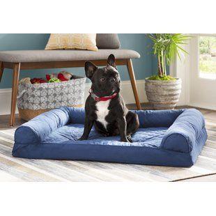 Pet Furniture You'll Love   Wayfair   Dog sofa, Dog b