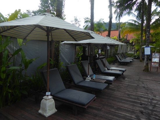 Liegestühle und Sonnenschirme am Pool - Picture of Khaolak .