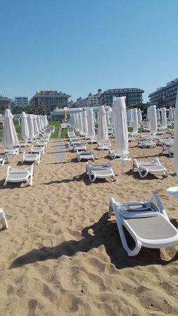 Stand mit Liegestühle und Sonnenschirme - Picture of Q Beach .